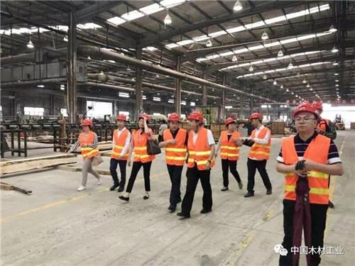 强强联合——发挥品牌引领, 助推必威中文网站全产业链高质量发展